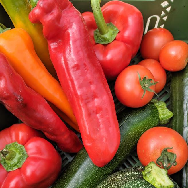Neu: nun wieder viel eigenes Gemüse